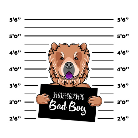Chow chow dog. Prisoner, convict. Dog criminal. Police placard, Police mugshot, lineup. Arrest photo Mugshot photo Vector illustration Stock Illustratie