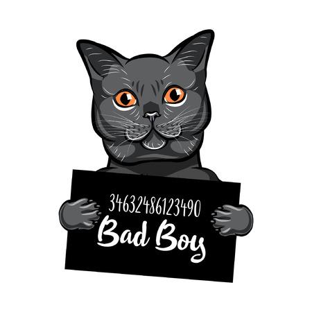 Mugshot of Russian Blue feline Illustration