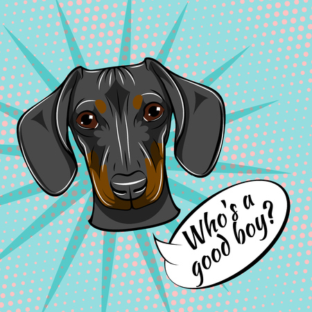 Dachshund dog portrait. Who is good boy text. Dog breed. Vector illustration