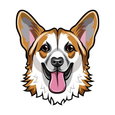 Welsh Corgi head. Smiling dog. Corgli muzzle, face. Dog breed Vector illustration