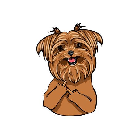 Yorkshire terrier dog. Middle finger gesture. Vector illustration