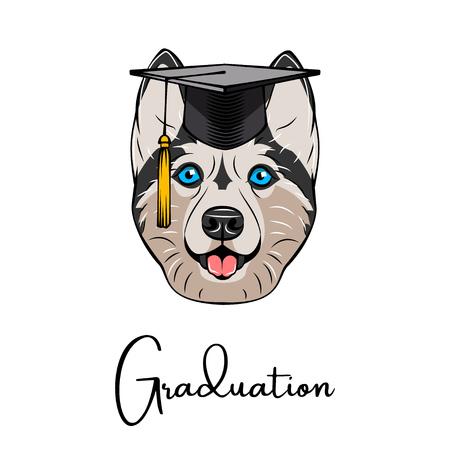 Siberian husky graduate with graduation cap vector illustration.