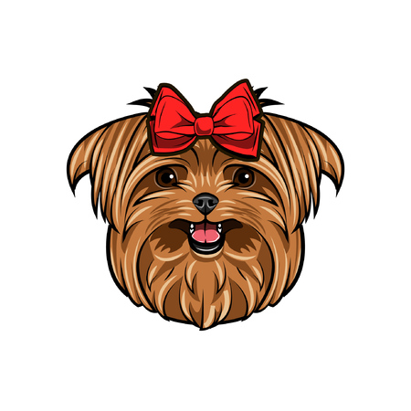 Yorkshire terrier dog head. Yorkshire terrier decorated with red bow on her head. Cute dog portrait vector illustration. Illustration