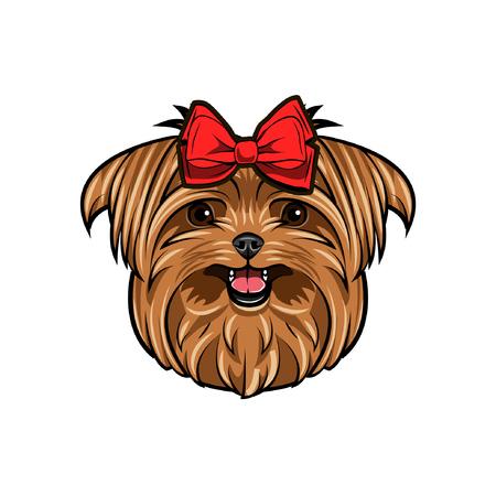 Yorkshire Terriër hond hoofd. Yorkshire terrier versierd met rode strik op haar hoofd. Leuke hond portret vectorillustratie. Stock Illustratie