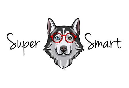Siberian Husky geek. Smart glasses. Super smart inscription. Red Eyeglasses. Vector illustration