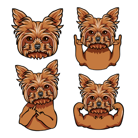 Yorkshire terrier. Rock gesture, Middle finger, Muscles. Dog face, muzzle head Vector illustration Иллюстрация