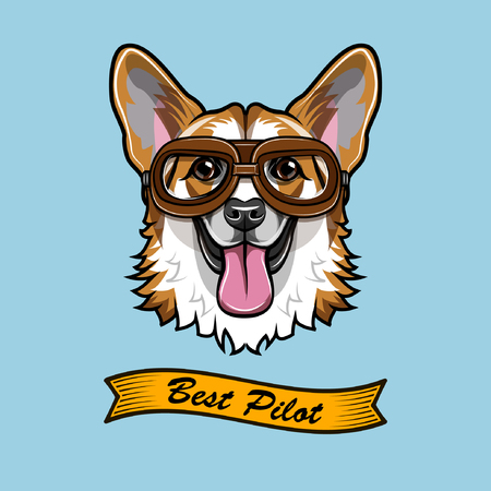 Corgi Pilot, Dog aviator with best pilot text.