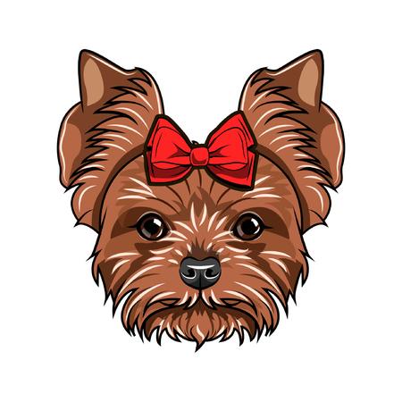 Portrait de Yorkshire terrier. Race de chien. Chien décoré d'un arc sur la tête. Illustration vectorielle