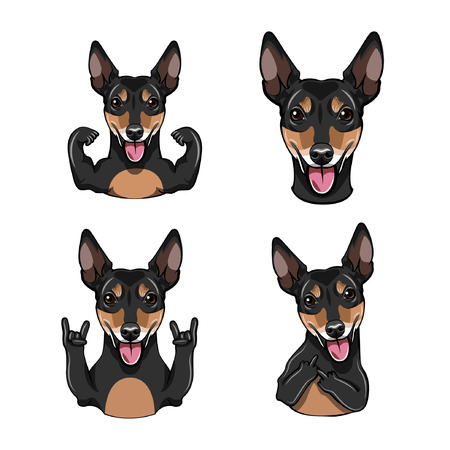 Russian Toy Terrier muzzle with Gestures. Illustration
