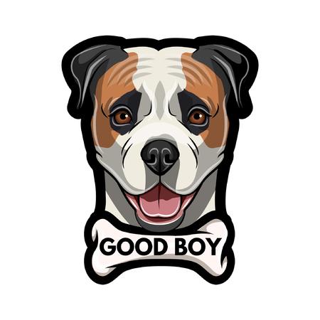 American Bulldog with Bone pendant and  Good boy inscription. Ilustração