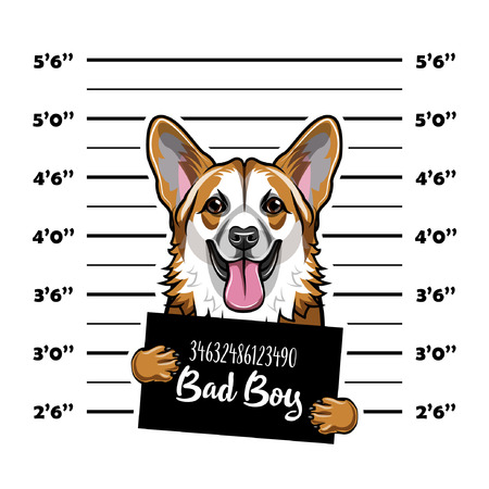 Mugshot illustration of criminal dog with bad boy lettering.