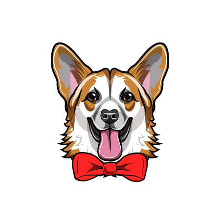 Welsh Corgi dog portrait with red bow.