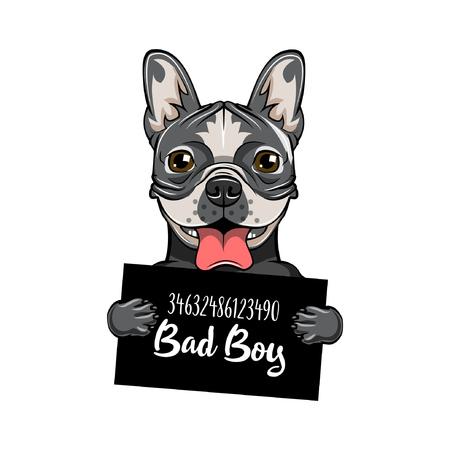 Bulldog prison. Dog criminal. Police mugshot. Vector illustration. Bad boy.