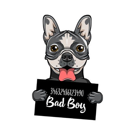 Bulldog prison. Dog criminal. Police mugshot. Vector illustration. Bad boy.