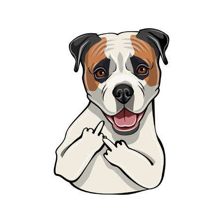 American Bulldog dog. Middle finger gesture. Dog breed vector illustration.