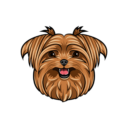 Dog Yorkshire terrier. Smiling cute dog. Dog breed. Yorkshire Terrier portrait. Vector illustration