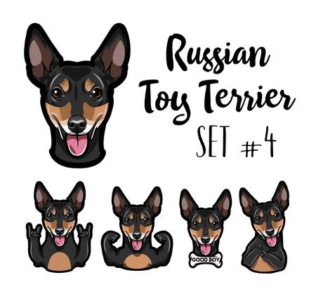 Russian Yoy terrier. Gestures set. Bone, middle finger, bone, muscles, rock gesture, horns. Vector illustration.