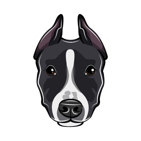 Staffordshire Terrier portrait Vector illustration.