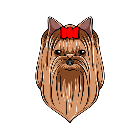 Yorkshire terrier dog. Red bow. Dogs accessory. Vector illustration Illustration