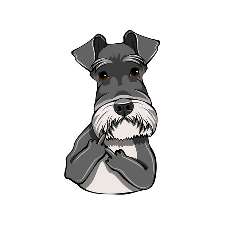 Schnauzer Dog giving Middle finger gesture.