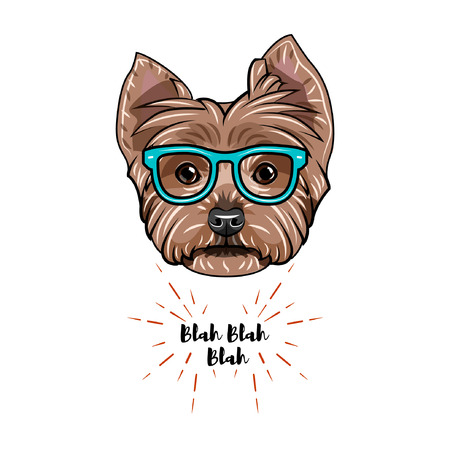 Yorkshire terrier icon Illustration