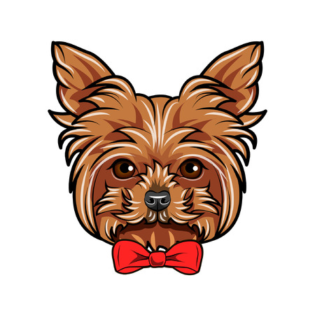 Yorkshire Terrier portrait. Red bow. Dog head. Yorkshire terrier breed. Vector illustration