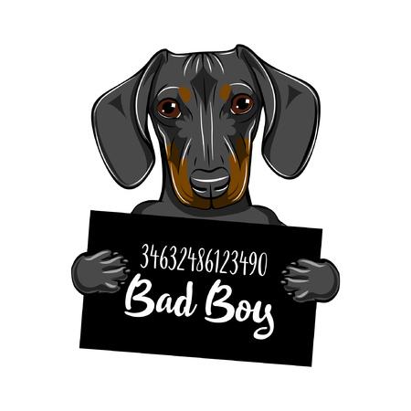 Teckel hond criminele vectorillustratie