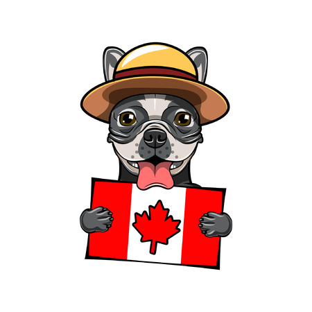 French bulldog. Canadian flag. Royal Canadian Mounted Police. Happy Canada day greeting card design. Vector illustration