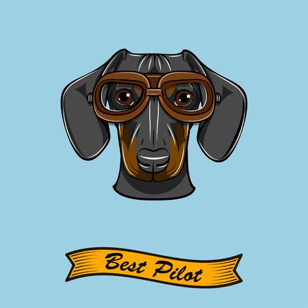 Dachshund dog pilot with Aviators glasses Best pilot inscription Vector illustration
