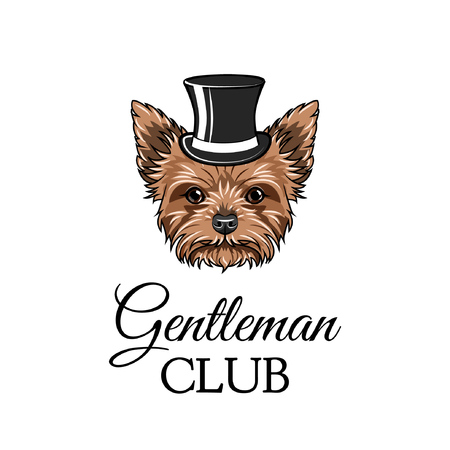 Yorkshire terrier gentleman. Top hat. Gentleman club text. Vector illustration