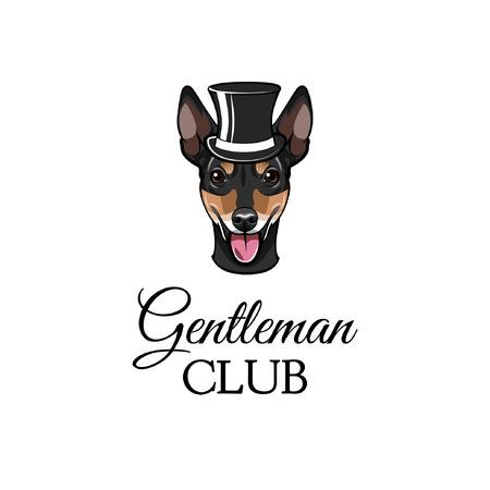 Russian Toy Terrier gentleman. Dog portrait. Top hat. Gentleman club text. Vector illustration