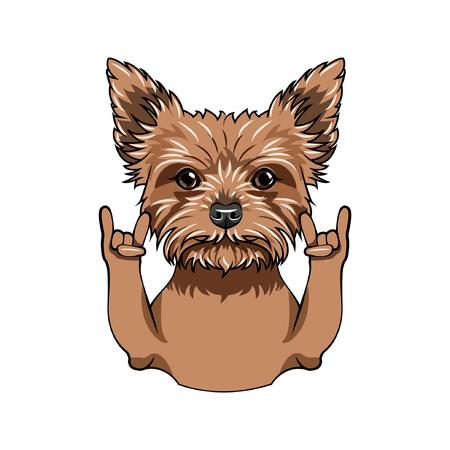 Yorkshire terrier dog. Horns gesture. Rock gesture. Dog breed. Vector illustration Illustration