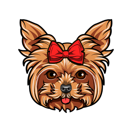 Yorkshire Terrier dog portrait. Red bow. Accessory. Yorkshire terrier breed. Vector illustration