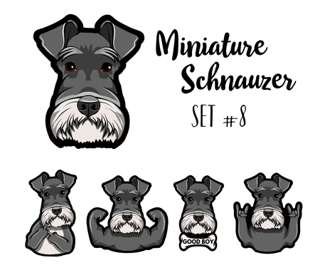 Schnauzer Dog. Rock gesture, Middle finger, Muscles, Horns, Bone. Gestures set. Dog portrait. Vector illustration