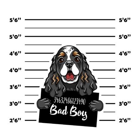 Cocker Spaniel bad boy. Dog criminal. Arrest photo. Police records. Dog prison. Police mugshot background. Vector illustration Иллюстрация