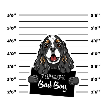 Cocker Spaniel bad boy. Dog criminal. Arrest photo. Police records. Dog prison. Police mugshot background. Vector illustration Illustration