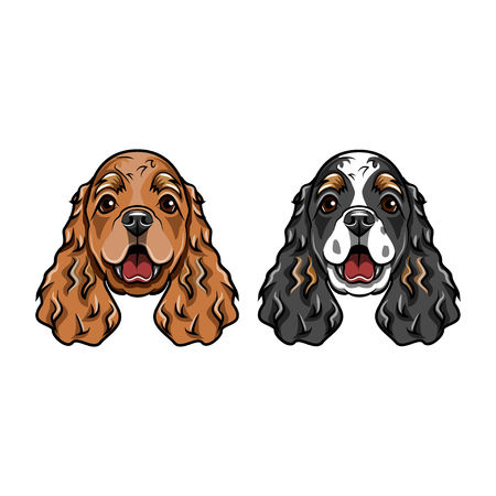 English Cocker Spaniels portraits. Dog breed. Two dogs. Vector illustration