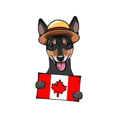 Russian Toy Terrier dog. Canadian flag. Canada day card. Royal Canadian Mounted Police. Dog portrait. Vector illustration