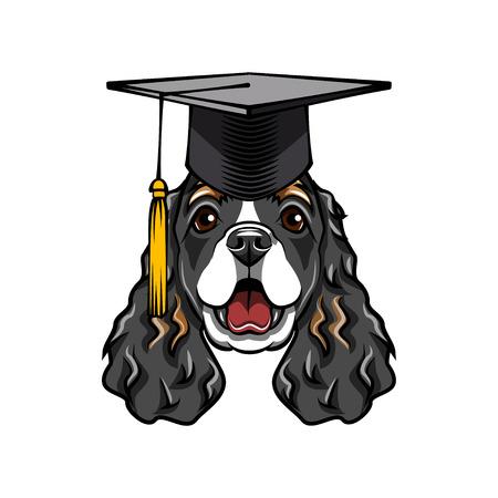 Cocker Spaniel dog graduate. Graduations hat cap. English Cocker Spaniel dog portrait. Dog breed. Vector illustration. Illustration