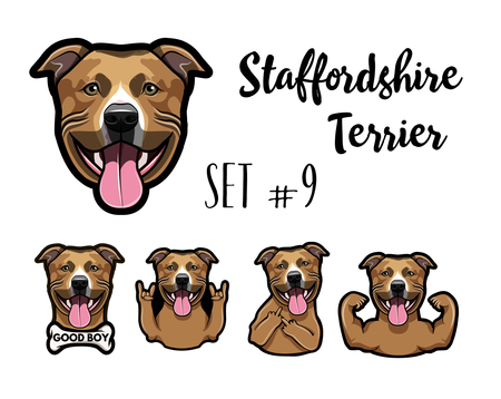 Staffordshire Terrier dog. Çizim