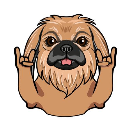 Pekingese dog. Rock gesture. Horns. Dog portrait. Pekingese breed. Vector illustration.