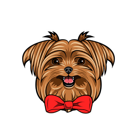 Yorkshire terrier dog portrait. Decorative bow. Red bow. Dog head, face, muzzle. Vector illustration.