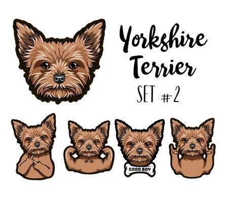 Yorkshire terrier dog head set.