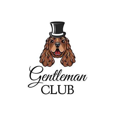 Cocker Spaniel dog gentleman with top hat. Gentleman club text. Dog breed Vector illustration.