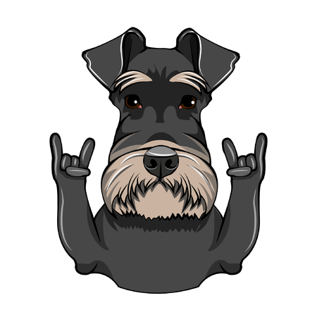 Schnauzer Dog Portrait. Horns, Rock gesture. Schnauzer breed. Vector illustration. Stock Illustratie