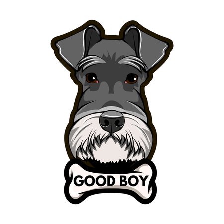 Schnauzer Dog Portrait. Bone. Good boy inscription. Schnauzer breed. Vector illustration.