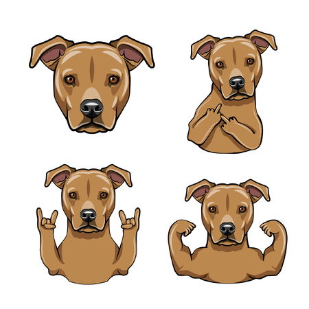 Staffordshire Terrier dog. Vector illustration.