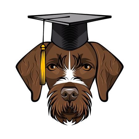 Dog German Shorthaired Pointer Graduate. Graduation cap hat. Vector illustration. Иллюстрация