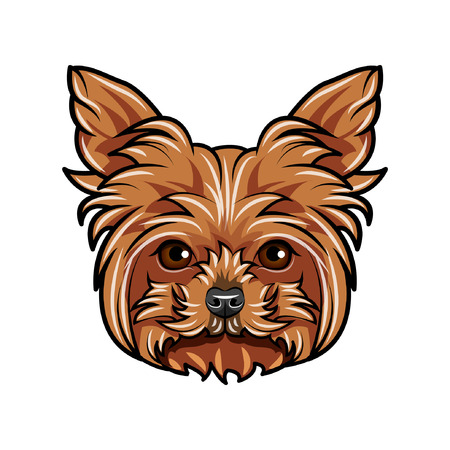 Dog Yorkshire terrier portrait. Dog breed. Dog face, muzzle, head. Vector illustration. 写真素材 - 100670013