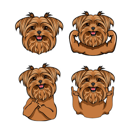 Yorkshire Terrier Dog. Vector illustration.